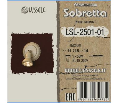 Спот LSL-2501-01