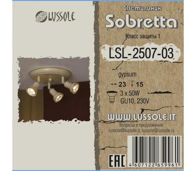 Спот LSL-2507-03